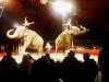Circus14